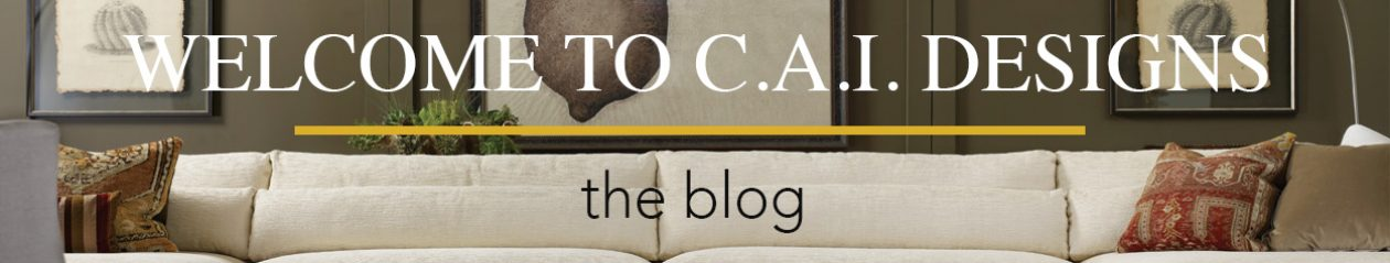 CAI Designs Blog